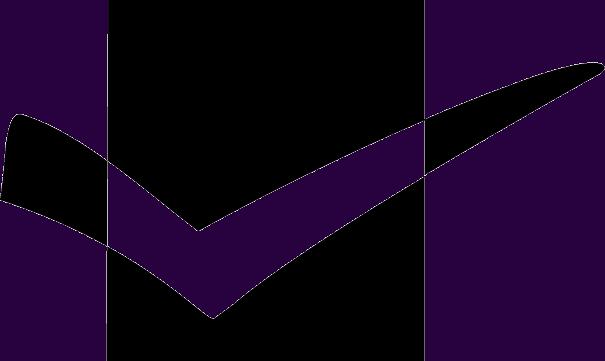 Standard For Excelence Logo